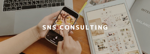 sns-consulting-pic